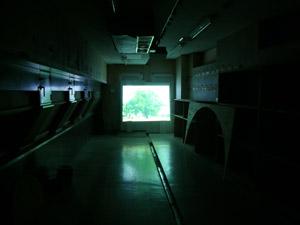 セマーソン夫妻の実験映像の展示