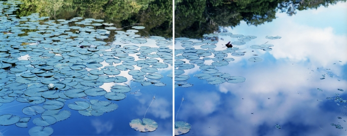 鈴木理策《水鏡 14, WM-77》(左)《水鏡 14, WM-79》(右)2014年 発色現像方式印画 各120.0×155.0cm  作家蔵 ©Risaku Suzuki, Courtesy of Taka Ishii Gallery
