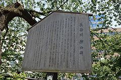 歴史的な文化の足跡