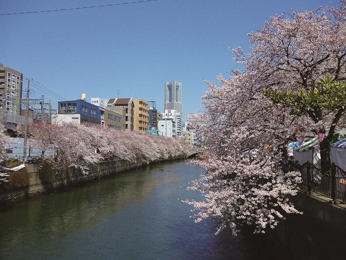 yoshioka-main-r